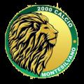 2000 Calcio Montesilvano